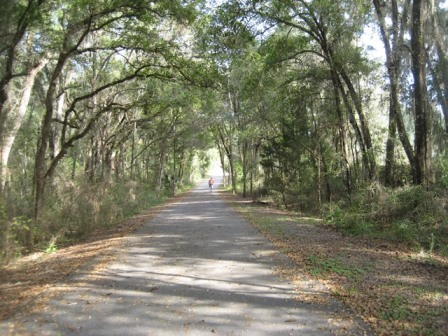 Good Neighbor Trail Brooksville