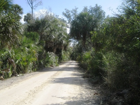 Dixie Mainline Trail, Florida eco-biking