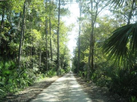 Florida Bike Trails, Dixie Mainline
