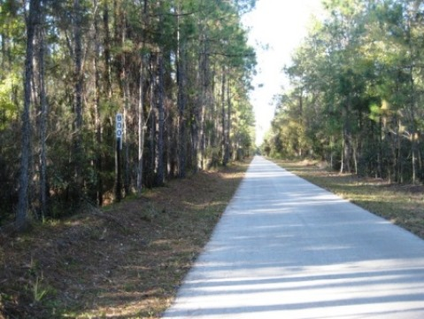 Van Fleet State Trail, Green Pond to Bay Lake