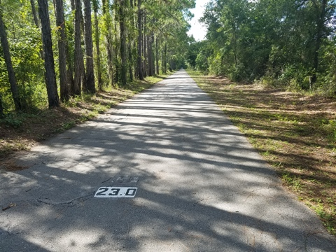 Van Fleet State Trail, Bay Lake to Mabel